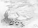 flyway - the geographic route along which birds customarily migrate