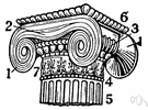gorgerin - the molding at the top of a column