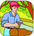tree farmer - someone trained in forestry