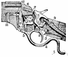 firing mechanism - the action that ignites the charge in a firearm