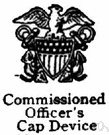 commissioned officer - a military officer holding a commission