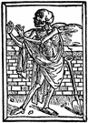 Dance of death - a medieval dance in which a skeleton representing death leads a procession of others to the grave