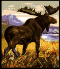 elk - large northern deer with enormous flattened antlers in the male