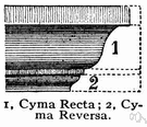 cyma - (architecture) a molding for a cornice